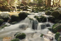 Mountain stream. Szklarka mountain stream, whose waters form a waterfall Szklarka Royalty Free Stock Images