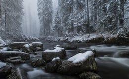 Mountain stream. Tatra National Park, Poland Stock Photography