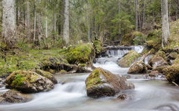 Mountain stream in the Tatras Royalty Free Stock Image