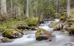 Mountain stream in the Tatras. Slovakia, spring 2014 Royalty Free Stock Image