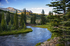 Mountain Stream in Telluride, Colorado Sunset. A beautiful, flowing stream courses through a Colorado Rocky Mountain forest Stock Photography
