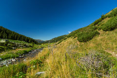 Mountain stream in the Transylvanian Alps Stock Image