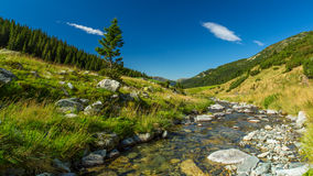 Mountain stream in the Transylvanian Alps Stock Photos