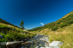 Mountain stream in the Transylvanian Alps Royalty Free Stock Image