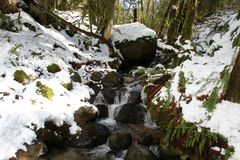 A mountain stream tumbling down some rocks. On a snowy winter day royalty free stock photos
