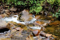 Mountain Stream Victoria Australia 2 Stock Photos