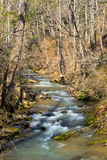 Mountain Stream in Virginia Royalty Free Stock Images