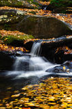 Mountain Stream and Waterfall. With beautiful fall colors Stock Photos