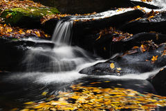 Mountain Stream and Waterfall Stock Photos
