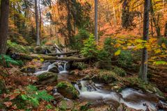 Mountain stream with waterfall in an autumn forest. Stock Image