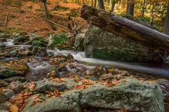 Mountain stream with waterfall in an autumn forest. Stock Photos