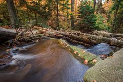 Mountain stream with waterfall in an autumn forest. Stock Photography