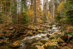 Mountain stream with waterfall in an autumn forest Royalty Free Stock Photography
