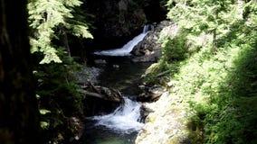 Mountain stream waterfall stock video