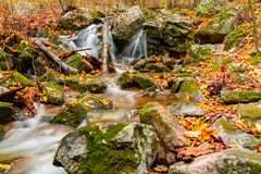 Mountain Stream Waterfall royalty free stock image
