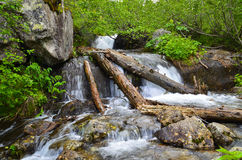 Mountain stream with waterfall Stock Images