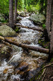 Mountain stream waterfall Royalty Free Stock Photography