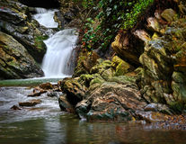Mountain stream waterfall with stones and forest greenery Stock Image