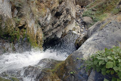Mountain stream with waterfall in the Tien Shan Stock Photos