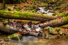 Mountain stream with waterfalls Royalty Free Stock Photo