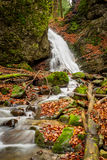 Mountain stream with waterfalls Royalty Free Stock Photography