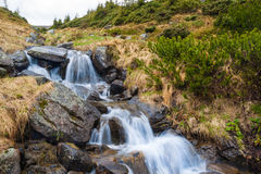 Mountain stream with waterfalls. Cascade of small waterfalls on a mountain stream stock photography