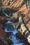 Mountain stream with waterfalls. Cascade of small waterfalls on a mountain stream royalty free stock images