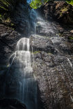 Mountain stream with waterfalls Royalty Free Stock Image
