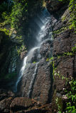 Mountain stream with waterfalls Royalty Free Stock Photos