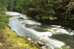 Mountain Stream, Whistler, British Columbia Stock Photo