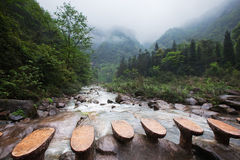 Mountain stream. White water mountain stream with rocks, sidestep, fog, and trees Royalty Free Stock Photo