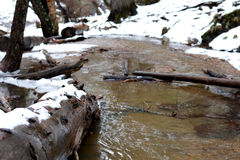 Mountain Stream in Winter Stock Photography