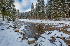 Mountain stream in winter, Tatra Mountains Stock Image