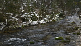 Mountain stream in winter stock footage