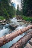Mountain Stream and Wooden Bridge Stock Image