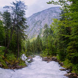 Mountain stream in the woods Stock Image