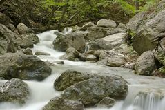 Mountain stream. Stock Photos