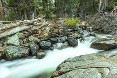 Mountain Stream Yosemite Royalty Free Stock Image