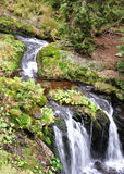 Mountain streams, landscape Jeseniky Stock Photography