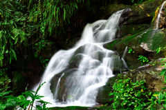 Mountain streams Royalty Free Stock Photography