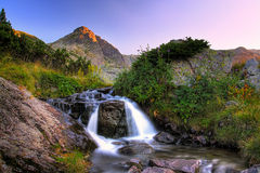 Mountain streem Royalty Free Stock Photo