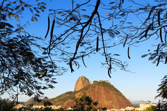 Mountain Sugarloaf in frame of leaves with moon, Rio de Janeiro Stock Images