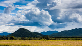 Mountain summer field. Summer field view landscape with mountain and rain cloud with blue sky Stock Photos