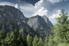 Mountain summer landscape in a beautiful day. With white fluffy clouds Stock Photography