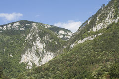 Mountain summer landscape Royalty Free Stock Image