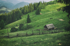 Mountain summer landscape Stock Images