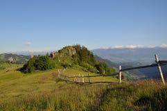 Mountain summer landscape Stock Photography