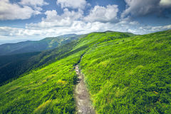 Mountain summer landscape Royalty Free Stock Images