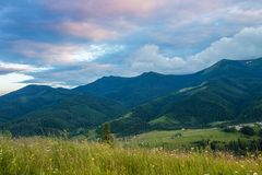 Mountain summer landscape with wooded green hills. Beautiful sunny scenery in clear weather. Pink sky stock photography