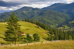 Mountain summer landscape with wooded green hills. Beautiful sunny scenery in clear weather.  stock photos